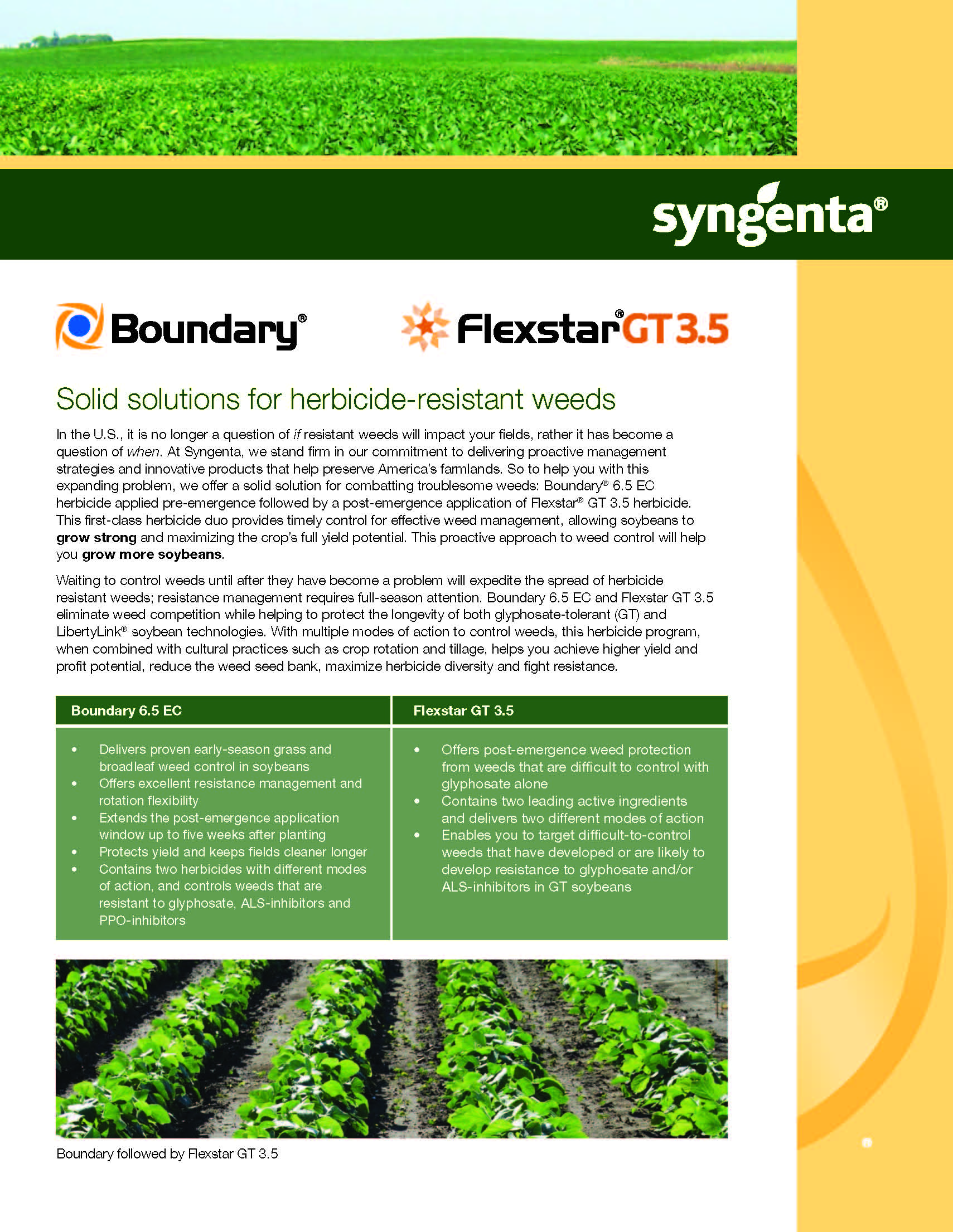 2015618201598155924_Boundary-Flexstar-Sell.jpg PDF