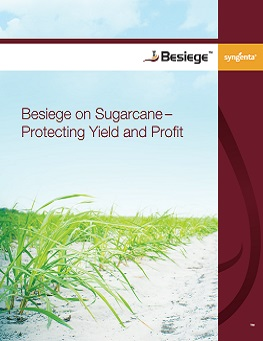 20167392016713211435_Besiege-on-sugarcane.jpg PDF