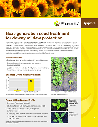 2017368201775174918_Plenaris_Sunflowers-SS.jpg PDF